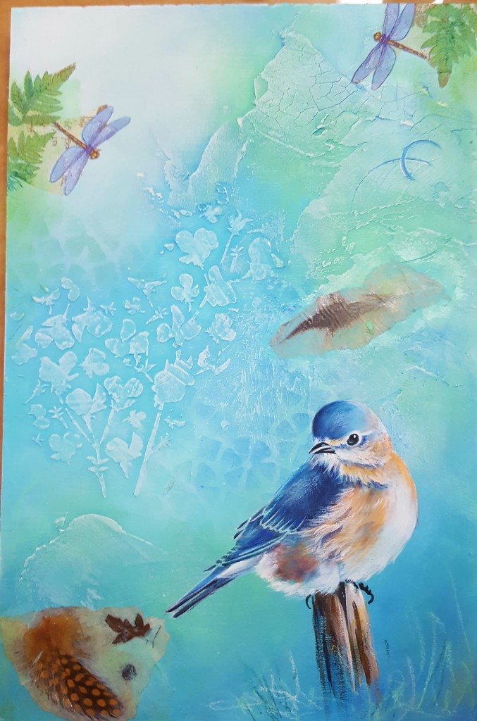 Blue bird MM finished