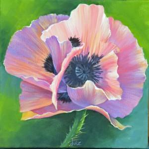 Poppy, a Liz Miller design