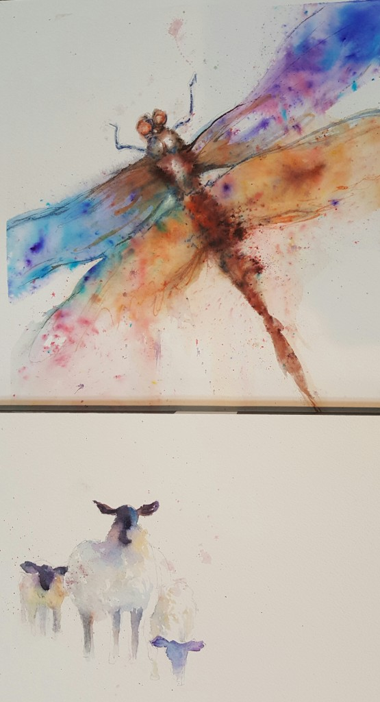 Wednesday: Dragonfly and Sheep