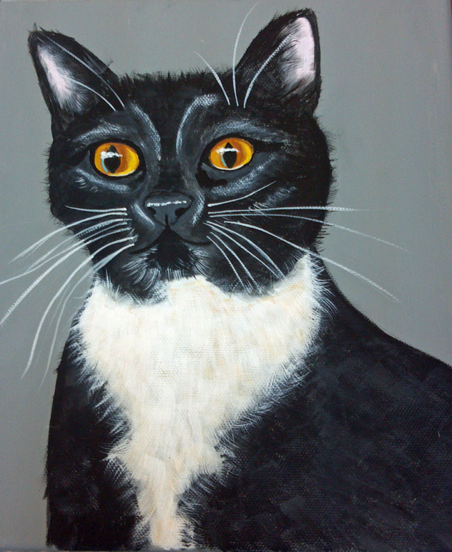 Melissa's cat.