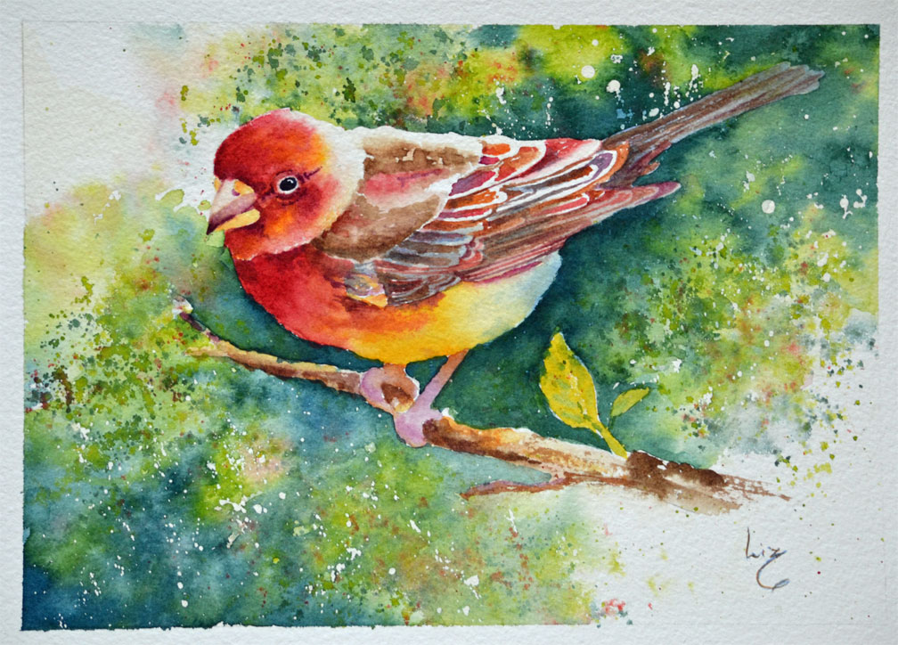 Finch painted by Liz Miller, designed by Susan Crouch