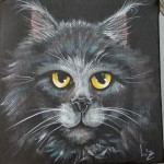 Maine Coon Black cat