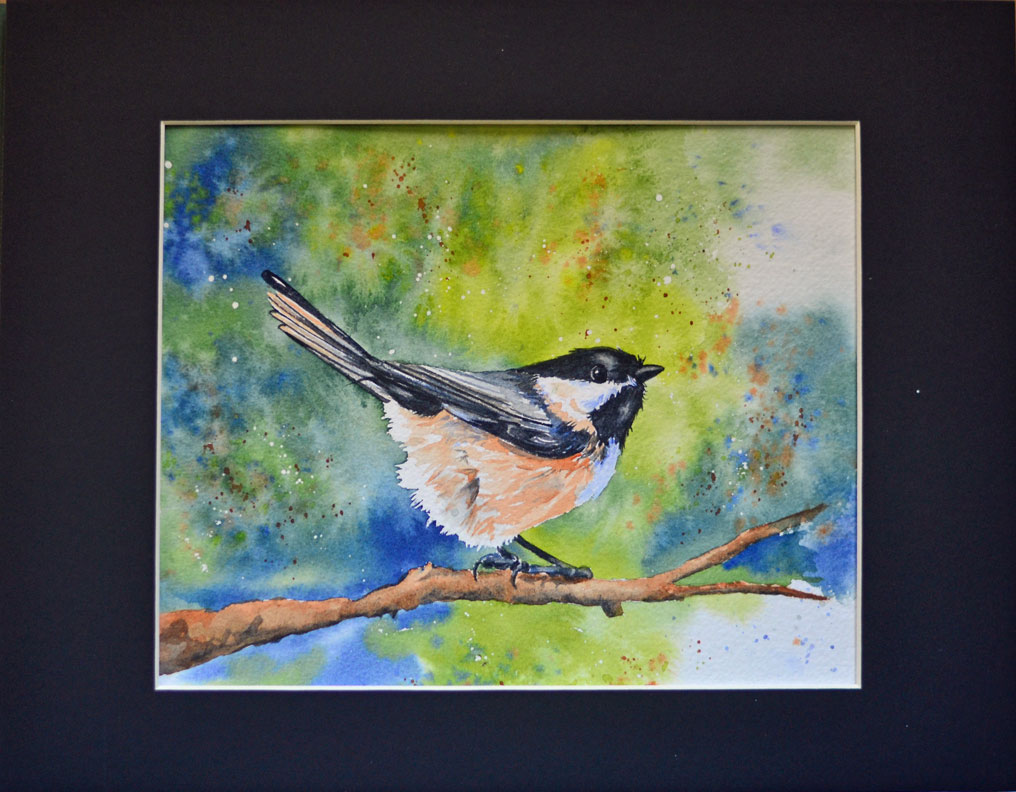 web-black-capped-chickadee