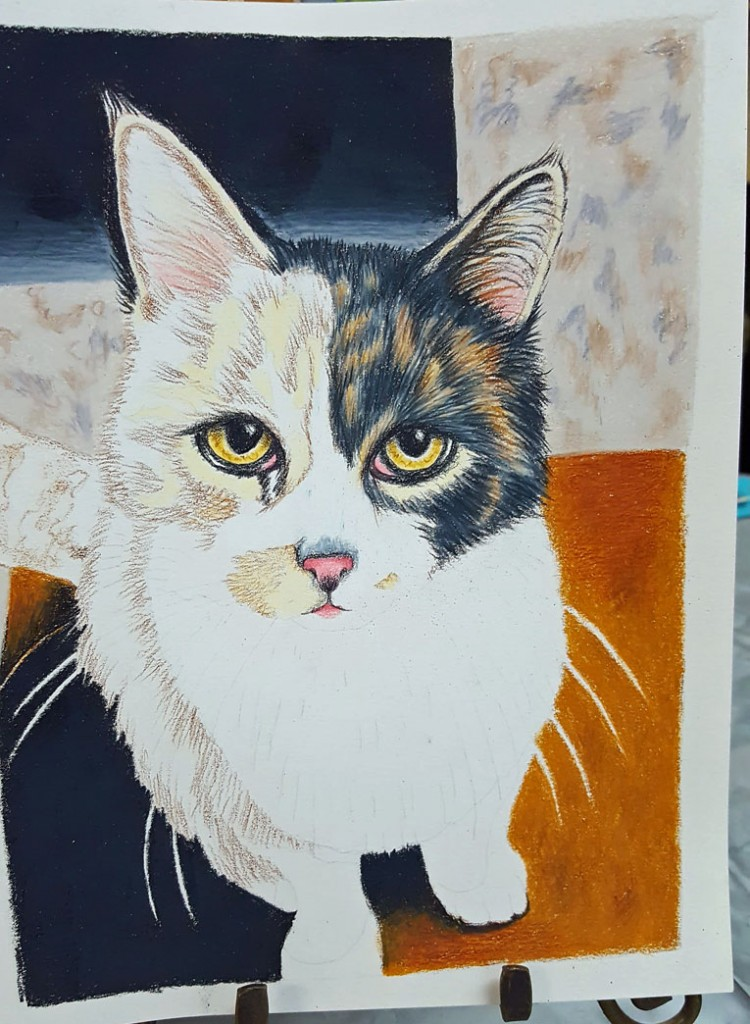 Lorinda's Mr Kitty in progress